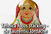 Tehnica focus stacking - de Laurentiu Iordache