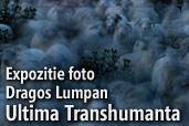 Ultima Transhumanta - Expozitie foto Dragos Lumpan