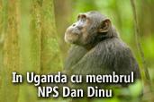 In Uganda cu membrul NPS Dan Dinu