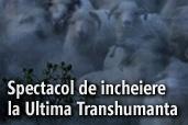Spectacol de incheiere la Ultima Transhumanta a lui Dragos Lumpan